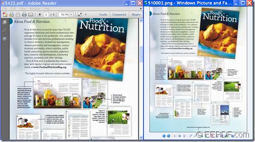 Input PDF and output image