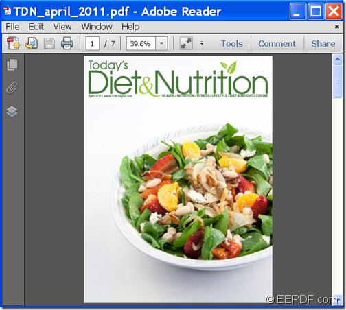 Input PDF document